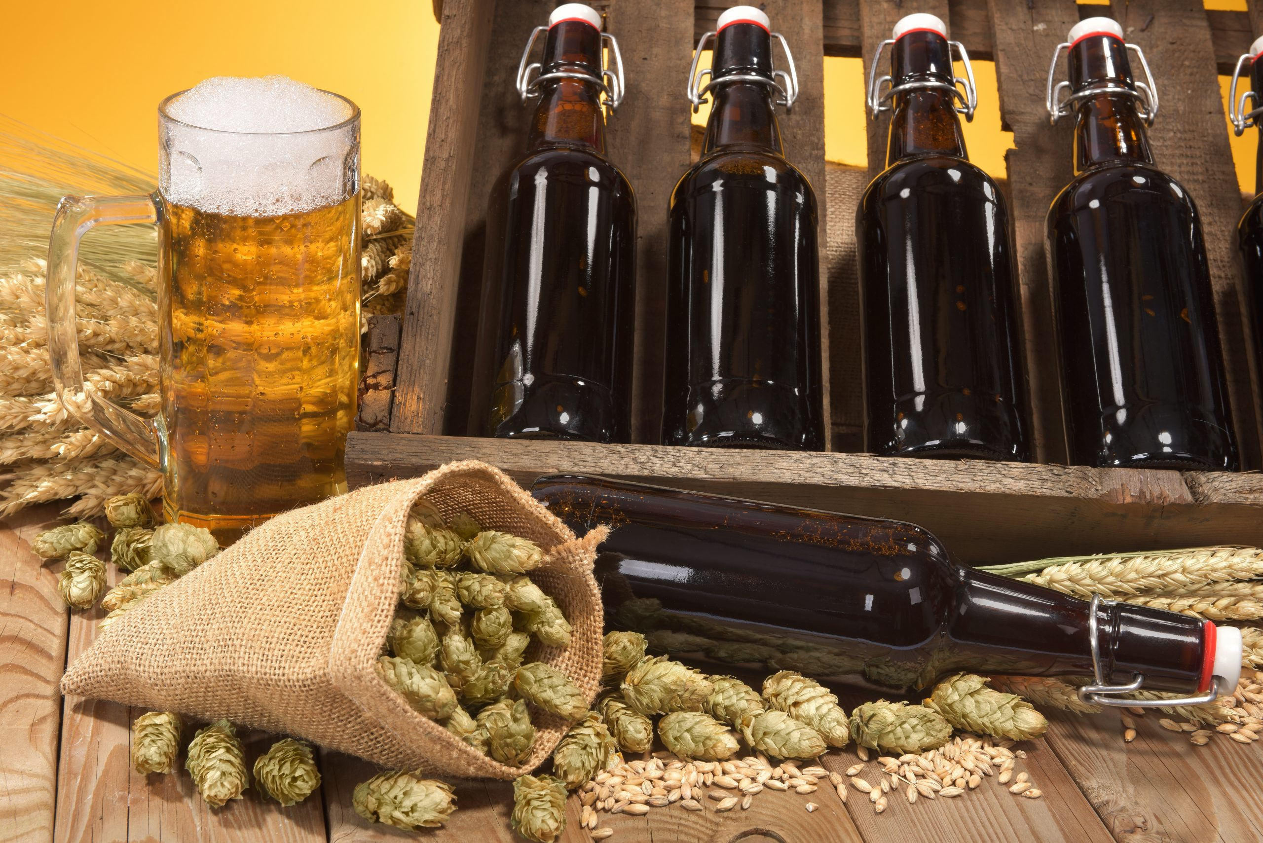 malt barley yeast hops ingredients