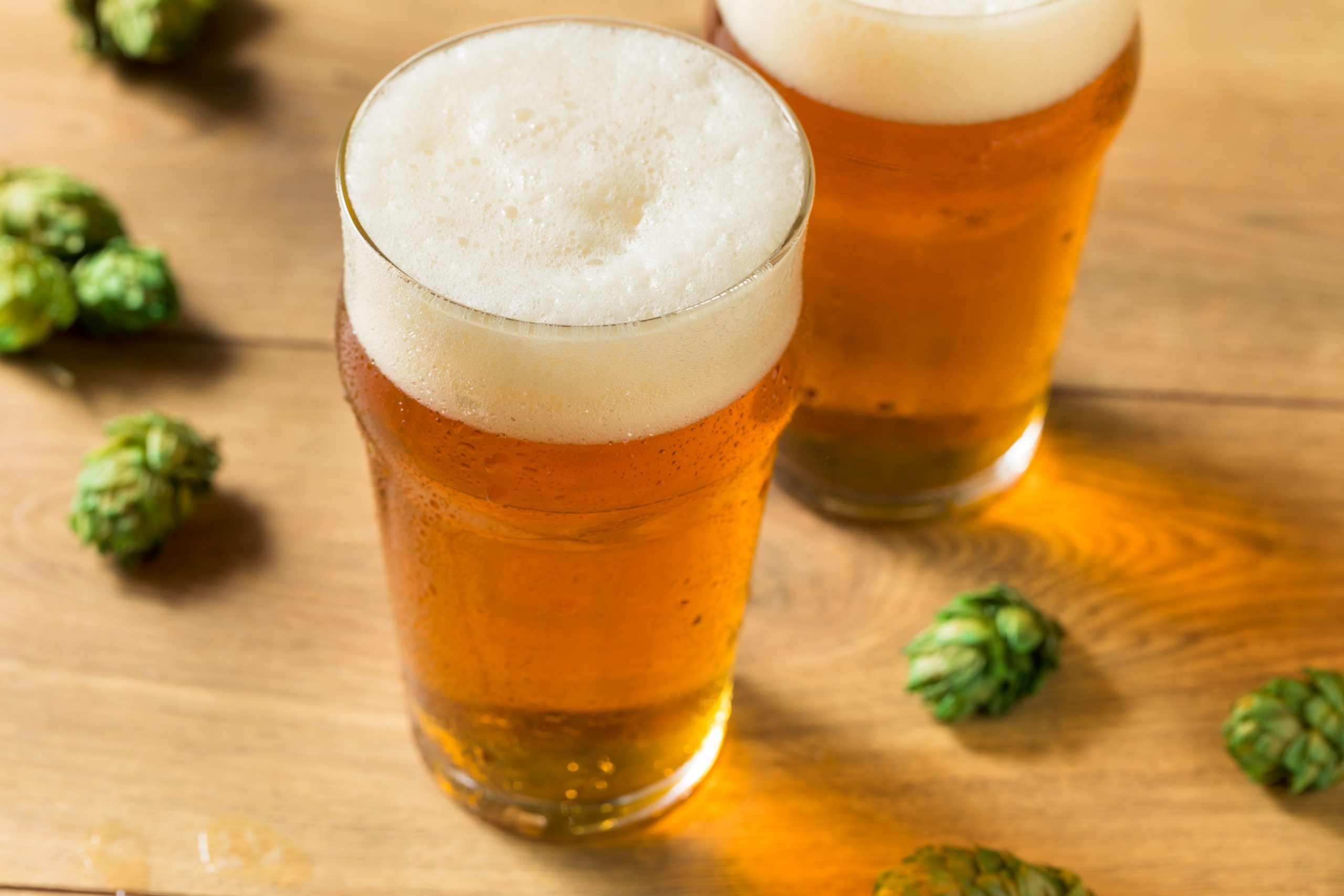 summer ipa craft beer with hops
